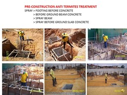 Thumb anti termites pre construction