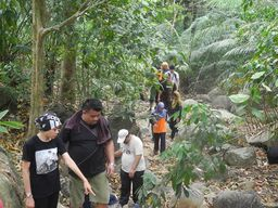 Thumb jungle trekking