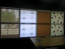 Thumb roller blinds