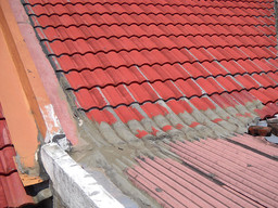 Thumb kingkote have problem with roof tiles 02