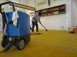 Thumb carpet cleaning